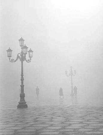 nebbia15