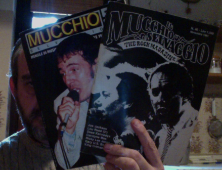 mucchio_kitchen